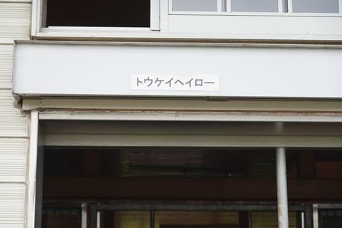 DSC01457_480.JPG