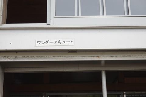DSC01469_480.JPG