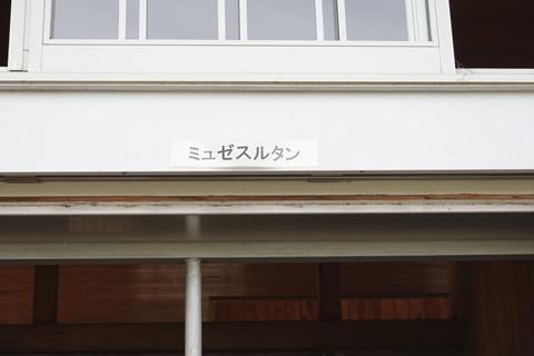 DSC01487_480.JPG