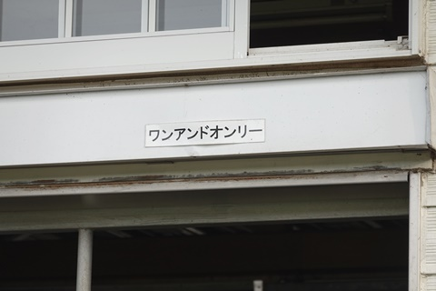 DSC01527_480.JPG