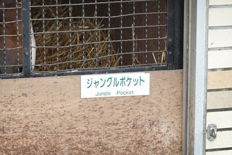 DSC01638_480.JPG
